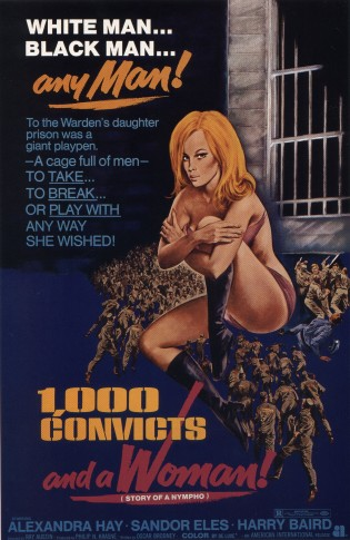 POSTER - 1,000 CONFICTS AND A WOMAN