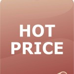 Adesivo Hot Price - adesivo-15-x-20-cm